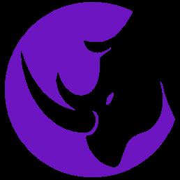 Rhyno Cybersecurity Logo